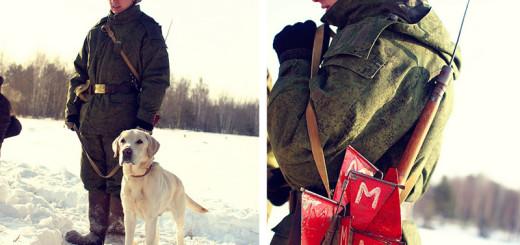 собаки армия