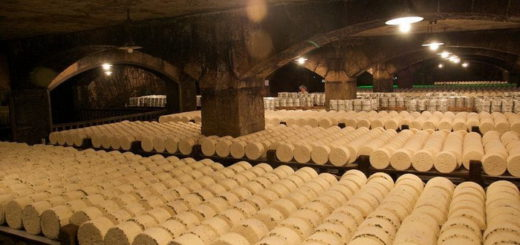roquefort-cheese-cave-5